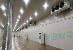 上海150立方-20℃低温血浆冷藏库建造预算多少钱