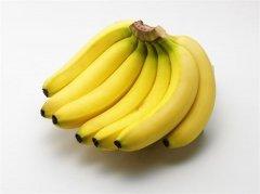 大型高温香蕉仓库(生鲜水果冷藏库)安装技术