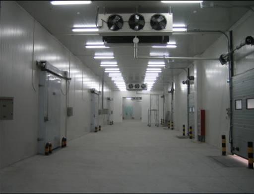 -25℃大型冻肉食品冷冻库安装设计全套报价?