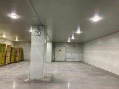 上海天天果园大型冷藏冷冻库建造设计