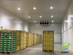 陕西300t猕猴桃农产品水果保鲜冷藏库建造费用?