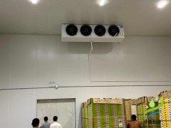 20平米冷冻库造价,小型低温冷库设计安装成本