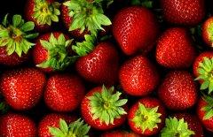 200平草莓水果冷藏库设计储存温度是多少?