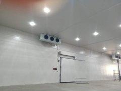 上海丽荐生鲜电商双温冷库设计安装工程