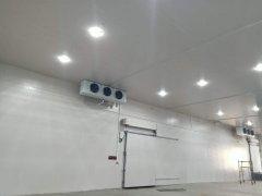 上海运杰-20度仓储物流冷冻库设计工程