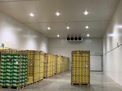 上海低温肉类冷藏间[冷冻库设计]建造一平米多少钱