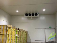 建一个冷冻库大概要多少钱(食品低温库设计安装)