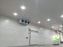 新建10000㎡大型生鲜电商仓储冷链(物流冷库安装)成本