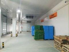 5000平方大型生鲜电商食品物流冷库安装建造方案