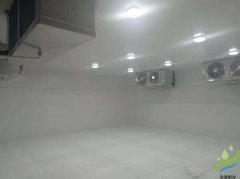 上海20立方米GSP小型医药冷库(药品冷藏室)建造特点及要求