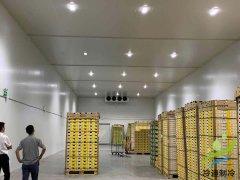 常见的各类果蔬保鲜冷藏库设计安装温度要求