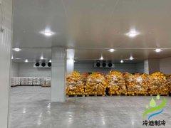 自建1000平米超市生鲜冷库安装需要多少钱