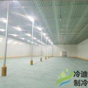 江苏安装0~5℃恒温水果保鲜冷库设计安装施工造价成本?