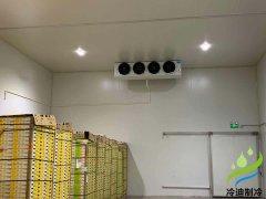 建一个100平米水果恒温保鲜冷库施工安装大约需要多少钱?