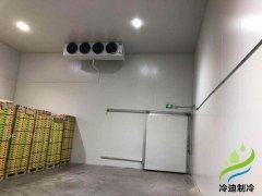 上海安装100平米猕猴桃水果保鲜冷藏库建造需要多少投资成本